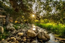 Golden Sunburst Over Escondido Creek